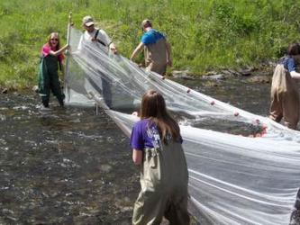 People casting a net in a fishing stream