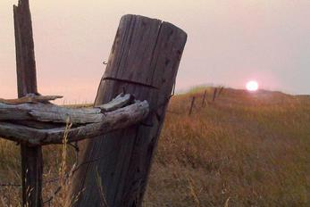 Fence post at sunrise
